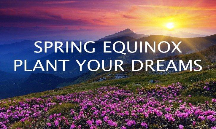 Spring-Equinox flowers